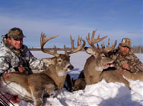 Whitetail Hunts2